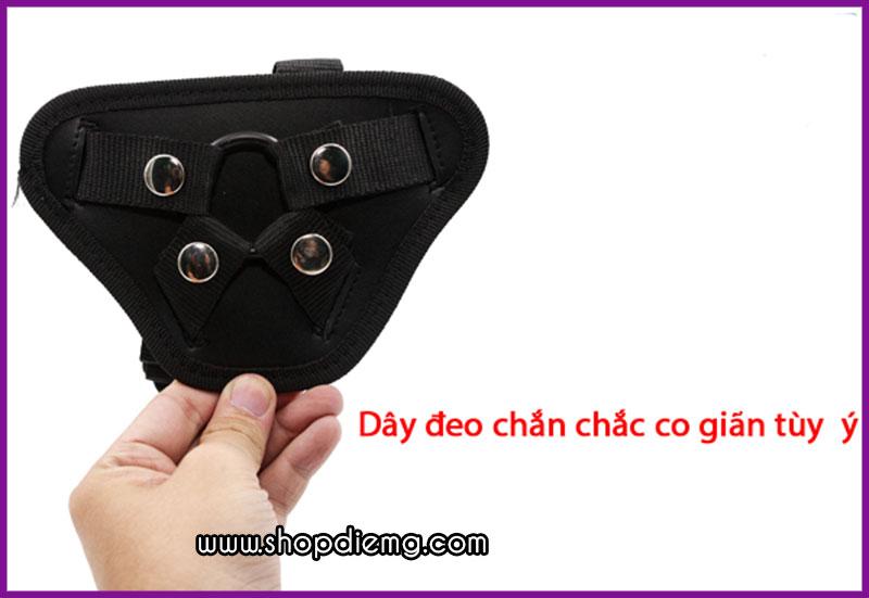 Dương vật giả dây đeo cao cấp màu đen Dildo Vibe 3