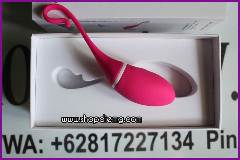 Trứng rung tình yêu điều khiển bằng điện thoại